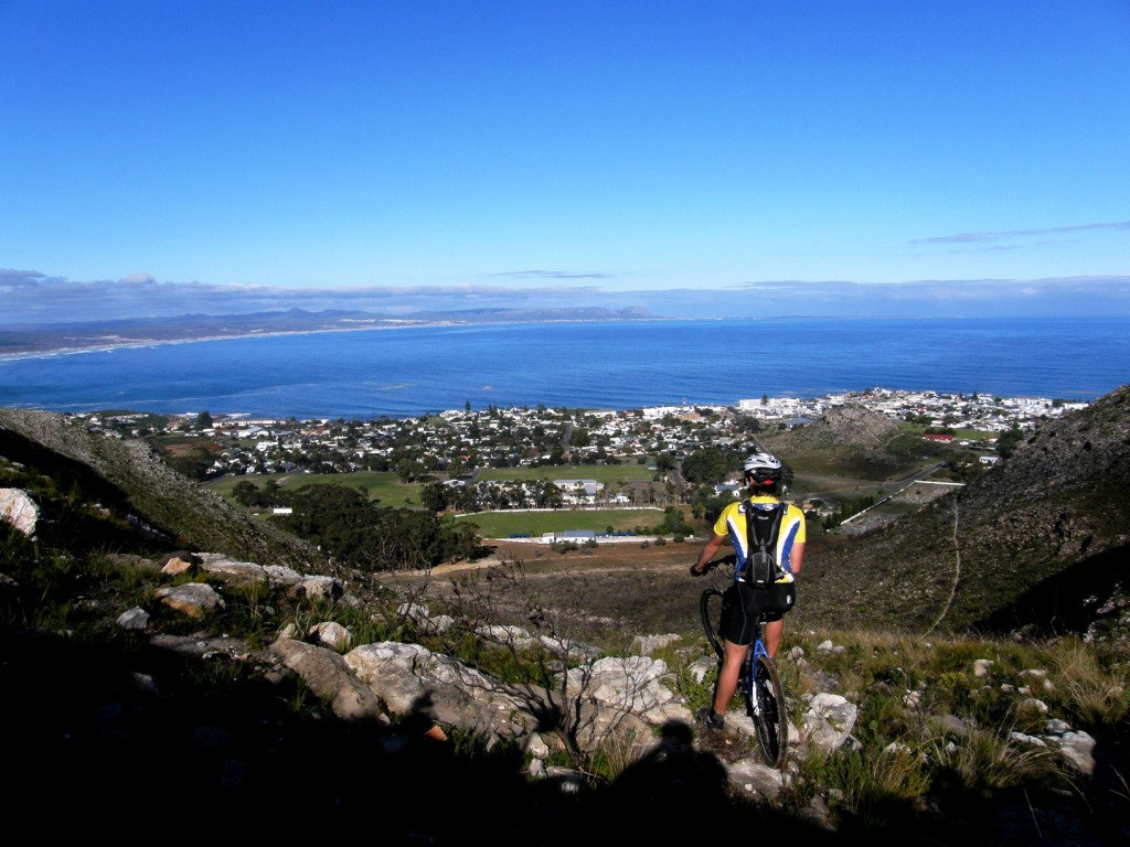 View over Hermanus